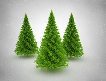Christmas trees and snow Stock Photography