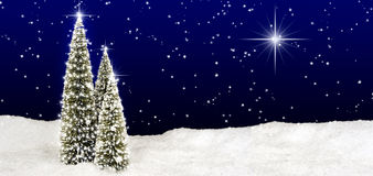 Christmas Trees Star Sky. Three Christmas trees standing in snow field decorated with white stars, night sky with many small stars and one large bright star Royalty Free Stock Images
