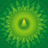 Christmas trees,vector. Green new year's trees and many pines around,vector illustration Stock Photos