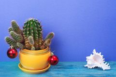 Christmas in tropical climate concept. Cactus as festive tree on bright pastel background with space for text Royalty Free Stock Photos