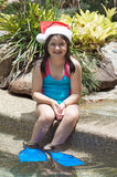 Christmas in the tropics Stock Photography