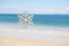 Christmas in the Tropics Royalty Free Stock Images