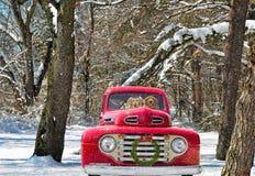Golden retrievers in vintage truck Royalty Free Stock Photos