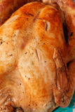 Christmas Turkey Stock Images