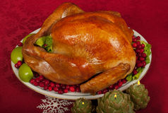Christmas Turkey Royalty Free Stock Photo