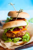 Christmas Turkey Burgers. With Cranberry Sauce Stock Image