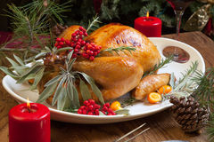 Christmas Turkey Prepared For Dinner. Roasted turkey garnished with sage, rosemary, and red berries in a tray prepared for Christmas dinner. Holiday table Royalty Free Stock Images