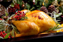 Christmas Turkey Prepared For Dinner. Roasted turkey garnished with sage, rosemary, and red berries in a tray prepared for Christmas dinner. Holiday table Stock Photo