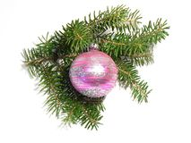 Christmas twig. Pink glass ball on twig Stock Photos