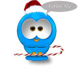 Christmas twitter bird. On a white background Stock Image