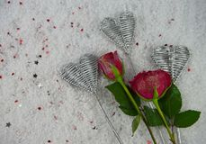 Christmas or Valentine romantic winter season photography image of red rose flowers in snow with glitter petals. Romantic real red rose flowers with glitter on royalty free stock image