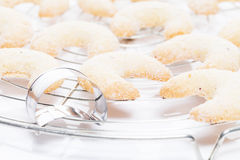 Christmas vanilla crescents on a cooling grid Royalty Free Stock Images