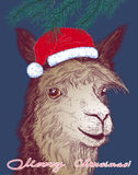 Christmas vector illustration with a cheerful alpaca Royalty Free Stock Image