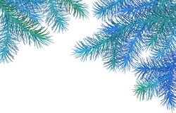 Christmas Spruce Border. Christmas vector spruce border. Blue branches of fir tree on a white background Royalty Free Stock Photos