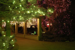 Christmas Walk. A covered walkway is lit with Christmas lights Royalty Free Stock Image