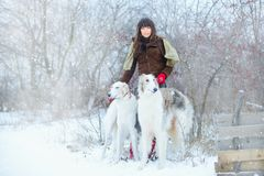 Christmas walk. Beautiful surprised woman in winter clothes with greyhound dogs graceful winter background with snow, emotions. po Stock Image