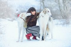 Christmas walk. Beautiful surprised woman in winter clothes with greyhound dogs graceful winter background with snow, emotions. po Stock Photo