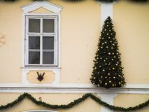 Christmas wall. Christmas tree in the front of classic building Stock Photography