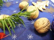 Christmas wallnut on a blue white table Stock Photos