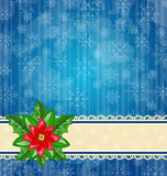 Christmas wallpaper with flower poinsettia Royalty Free Stock Photography