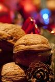 Christmas walnut Royalty Free Stock Photo