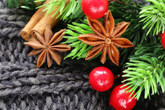 Christmas warm knitted background with fir tree and spices anise Stock Photography