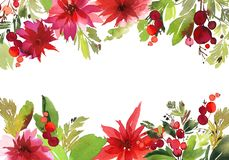 Christmas watercolor card. With berries and flowers Stock Images