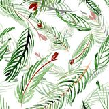 Christmas watercolor pattern of fir branches on a background. Hand drawn illustation. Christmas watercolor pattern of fir branches on a background Royalty Free Stock Photos