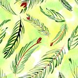 Christmas watercolor pattern of fir branches on a background. Hand drawn illustation. Christmas watercolor pattern of fir branches on a background Stock Photos