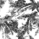 Christmas Watercolor Seamless Background. Christmas Watercolor Seamless Monochrome Background with Sprig of Fir Trees and Pine cones Stock Photo