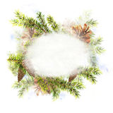 Christmas Watercolor with Sprig of Fir Trees Stock Photography