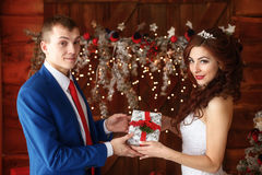 Christmas wedding. Happy bride and groom together. Marriage concept. Christmas wedding. Young happy bride and groom together. Marriage concept Stock Images