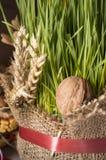 Christmas wheat Royalty Free Stock Photos