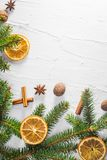 Christmas white background fresh twigs conifer tree dried citrus royalty free stock photos