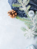 Christmas winter background with fir tree branches. Vertical Royalty Free Stock Photo