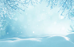 Christmas winter background with snow Royalty Free Stock Photo