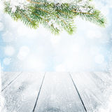 Christmas winter background with snow fir tree Stock Photography