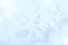 Christmas winter background with snowflakes Royalty Free Stock Photos