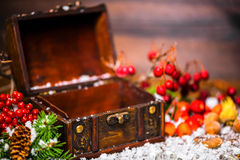 Christmas winter concept with opened chest, apple, nuts, cones, Royalty Free Stock Photos