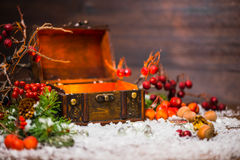 Christmas winter fairy with light miracle in opened chest. Backg Royalty Free Stock Photo