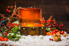 Christmas winter fairy with miracle in opened chest. Winter back Royalty Free Stock Photography