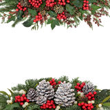 Christmas and Winter Floral Border stock photography