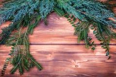 Christmas winter foliage Stock Photo