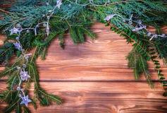 Christmas winter foliage Royalty Free Stock Photo