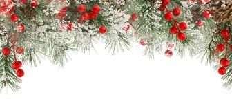 Christmas winter frame of green fir or spruce branches with snow, red berries and cones isolated on white background, royalty free stock photography