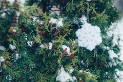 Christmas winter holiday festive background. Fluffy shiny snowflake on the branches of the ever-green tree, christmas trees, outdoor. Xmas decoration banner stock photos