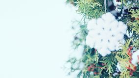 Christmas winter holiday festive background. Fluffy shiny snowflake on the branches of the ever-green tree, christmas trees, outdoor. Xmas decoration banner stock image