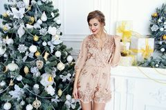 Christmas winter holidays Stock Images