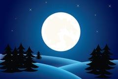 Christmas winter landscape. Illustration of winter night with stars Stock Photo