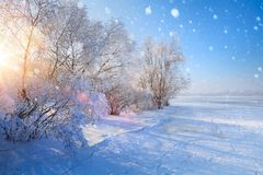 Christmas winter Landscape; Frozen lake and snowy trees. Art Christmas winter Landscape; Frozen lake and snowy trees stock photos